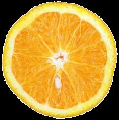 laranja24qz-scaled500