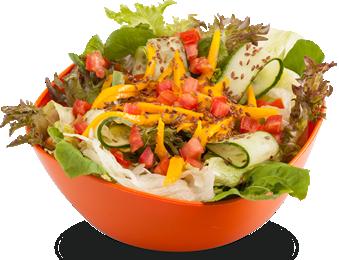 Salada-02