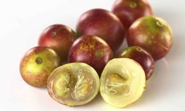 camu-fruta-29001