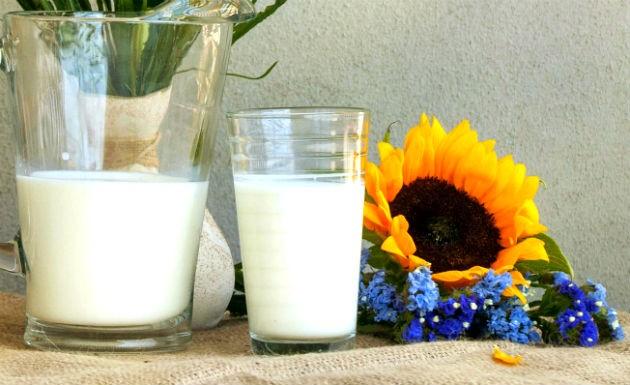 leite-de-semente-de-girassol-rejuvenesce-e-acalma-3